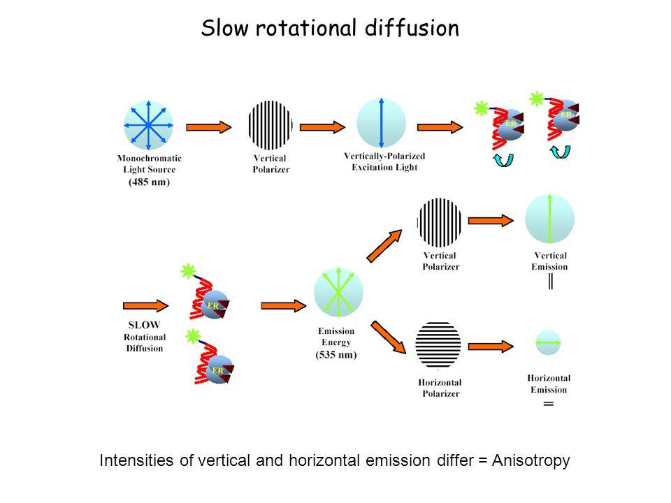 Slow rotational diffusion