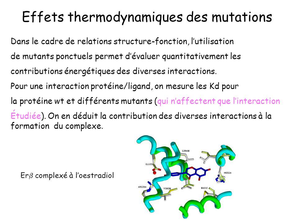 Effets thermodynamiques des mutations