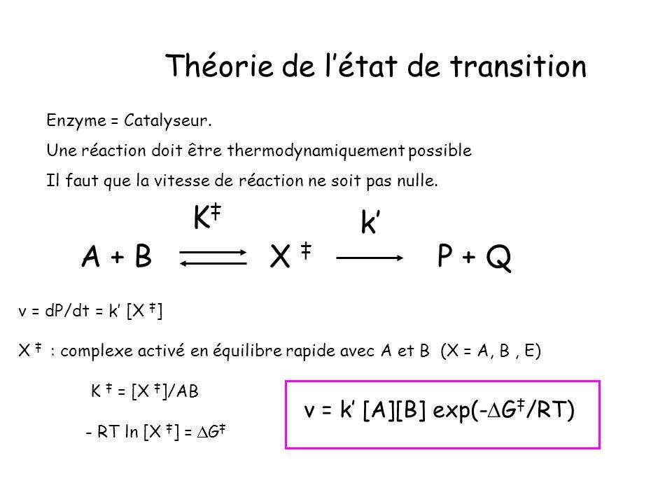 Théorie de l'état de transition