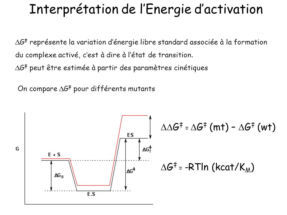 Interprétation de l'Energie d'activation