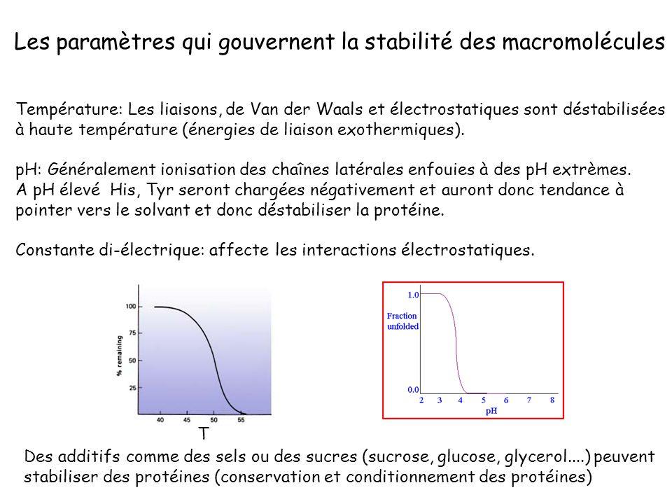 Les paramètres qui gouvernent la stabilité des macromolécules