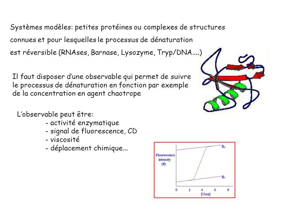 Systèmes modèles: petites protéines ou complexes de structures