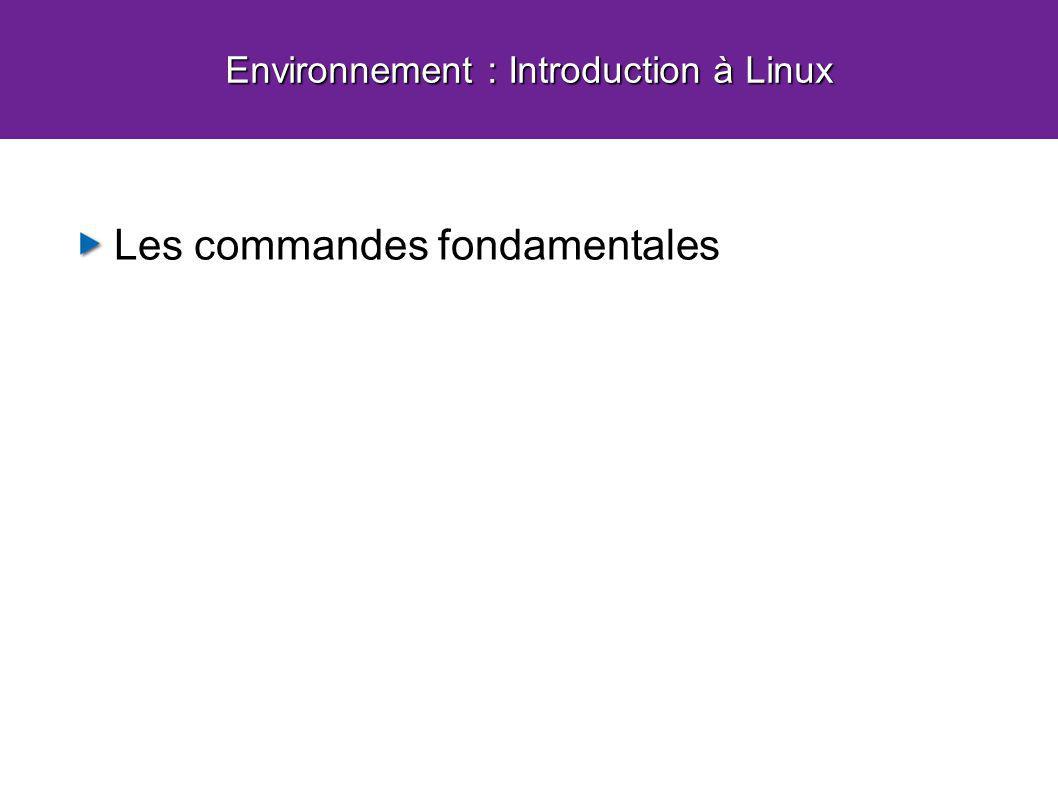 Environnement : Introduction à Linux