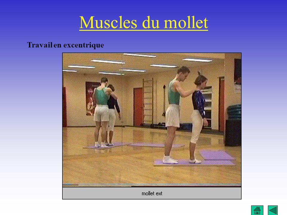 Muscles du mollet Travail en excentrique