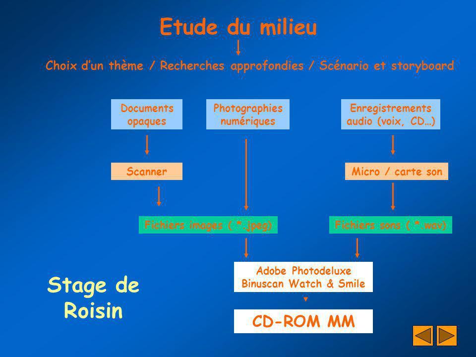 Etude du milieu Stage de Roisin