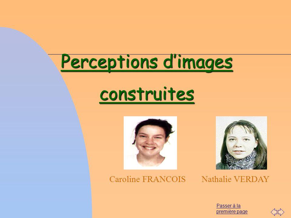 Perceptions d'images construites
