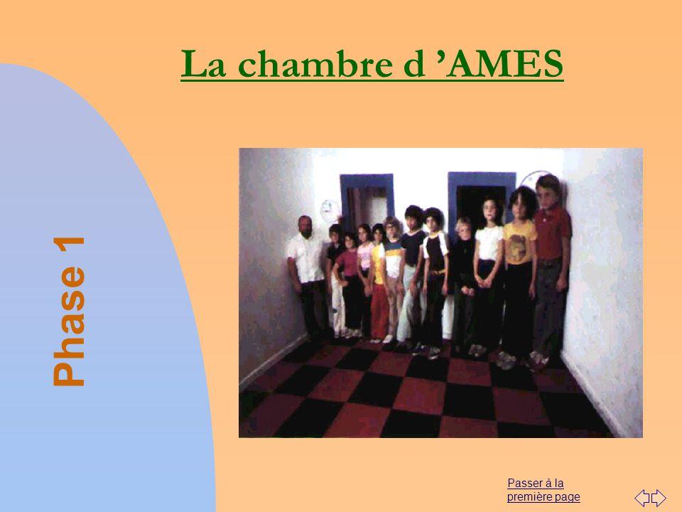 La chambre d 'AMES Phase 1 01/04/2017