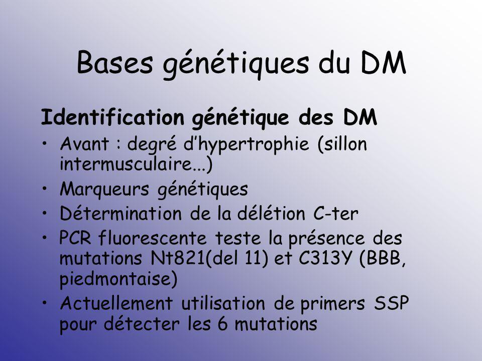 Bases génétiques du DM Identification génétique des DM