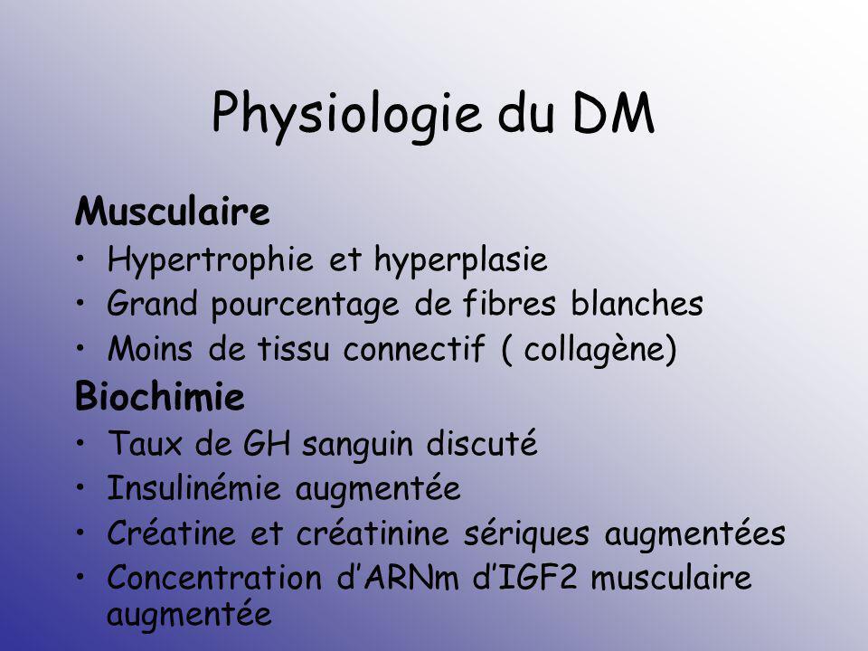 Physiologie du DM Musculaire Biochimie Hypertrophie et hyperplasie