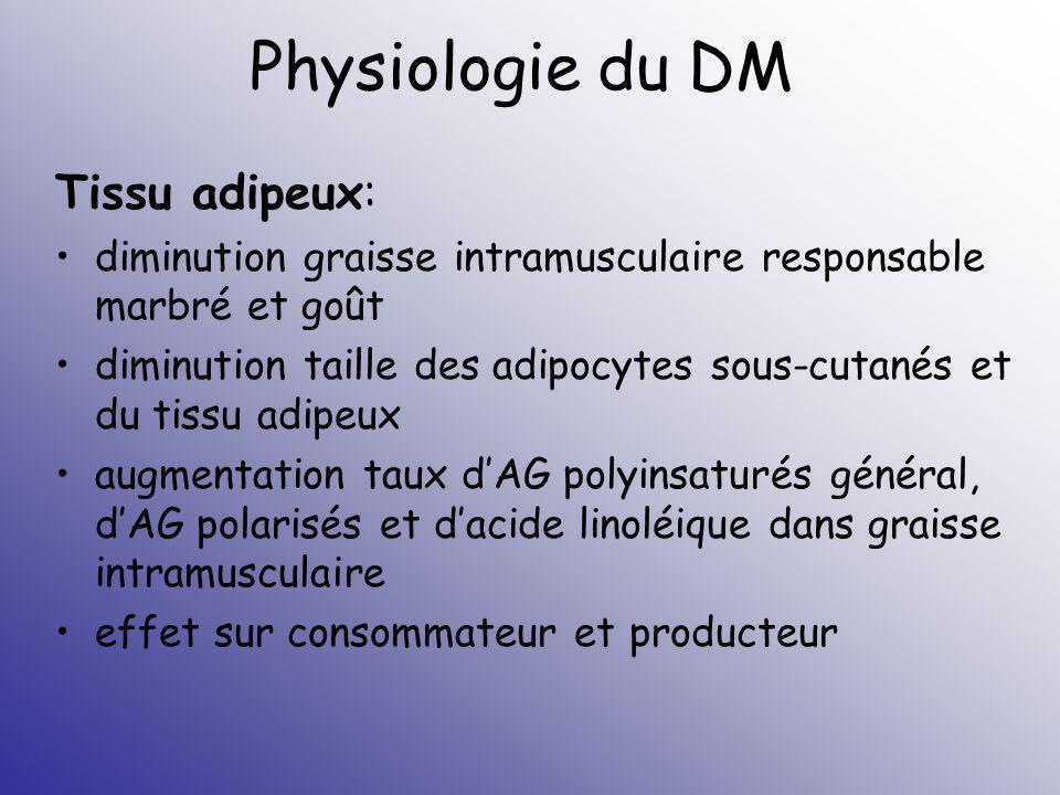 Physiologie du DM Tissu adipeux: