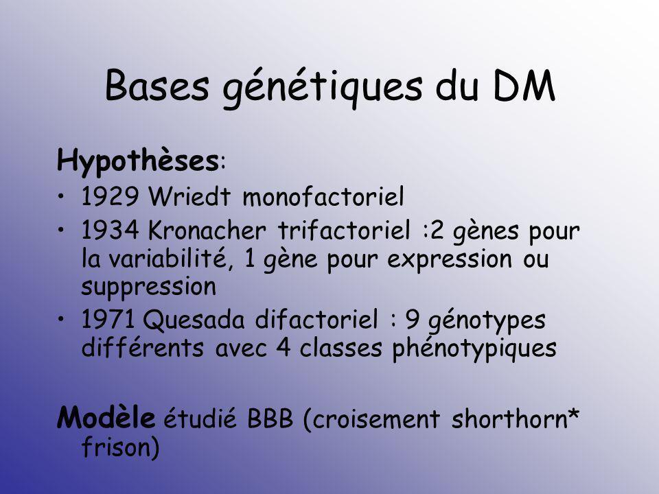 Bases génétiques du DM Hypothèses: