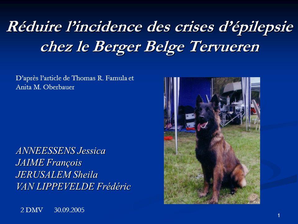 Réduire l'incidence des crises d'épilepsie chez le Berger Belge Tervueren
