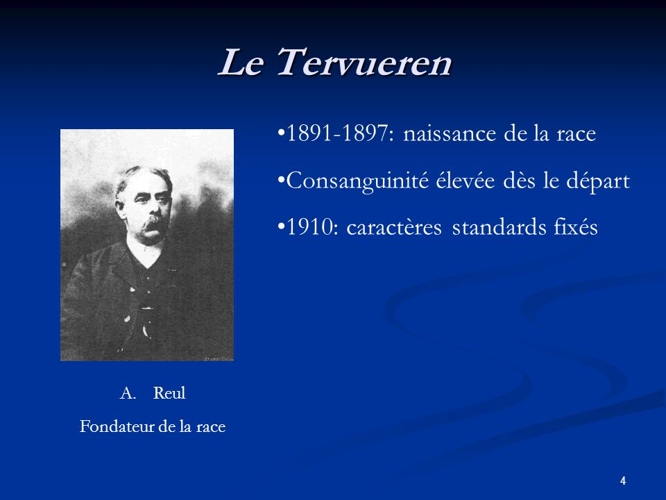 Le Tervueren 1891-1897: naissance de la race