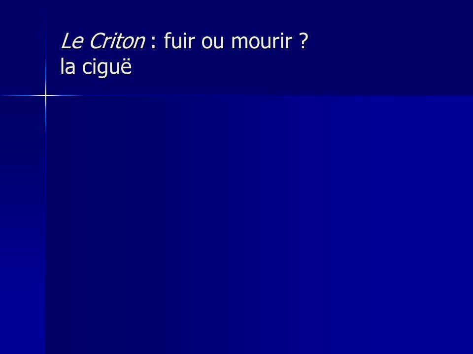Le Criton : fuir ou mourir la ciguë