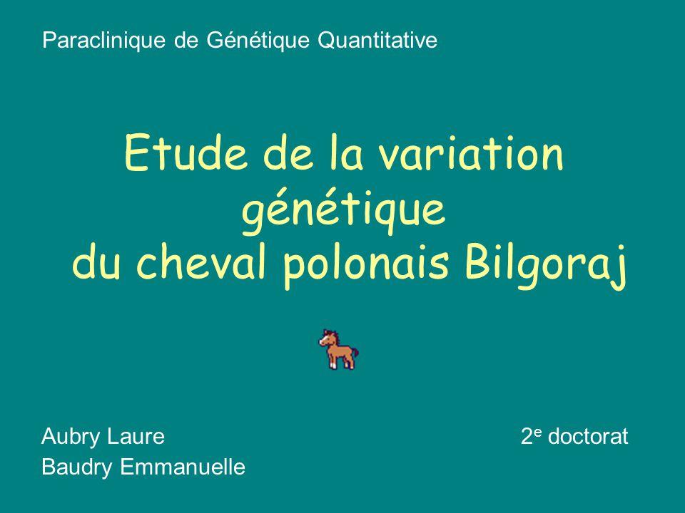 Etude de la variation génétique du cheval polonais Bilgoraj