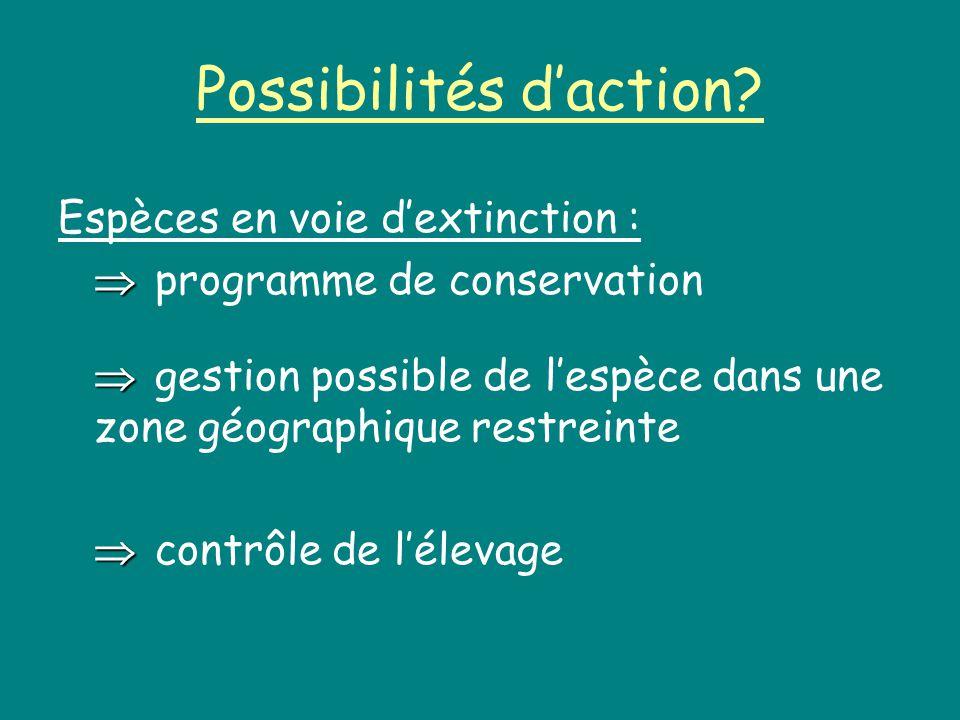 Possibilités d'action
