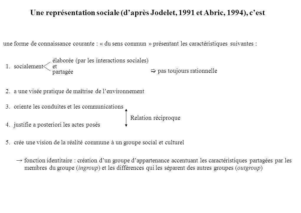 Une représentation sociale (d'après Jodelet, 1991 et Abric, 1994), c'est