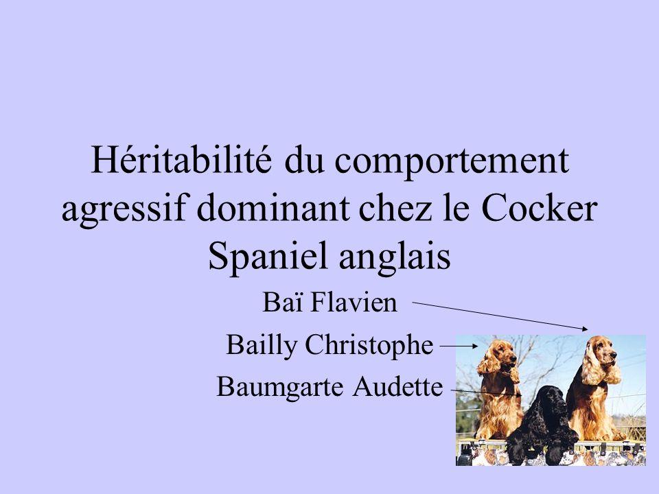 Baï Flavien Bailly Christophe Baumgarte Audette
