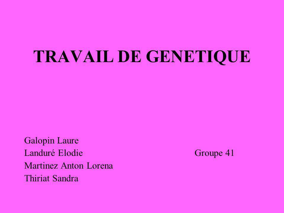 TRAVAIL DE GENETIQUE Galopin Laure Landuré Elodie Groupe 41