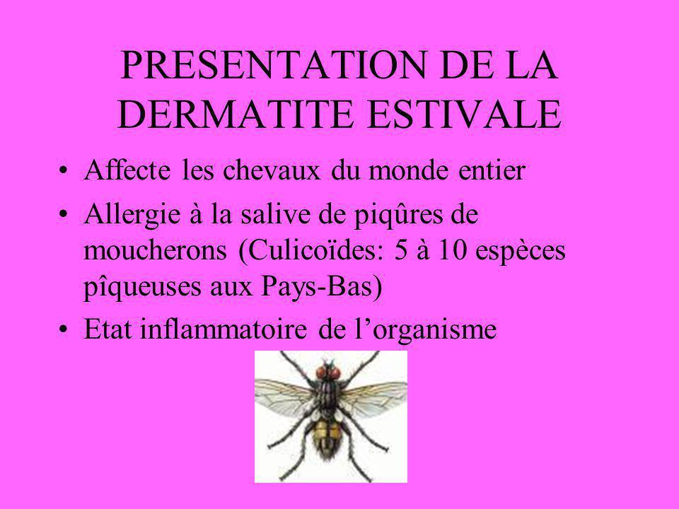 PRESENTATION DE LA DERMATITE ESTIVALE