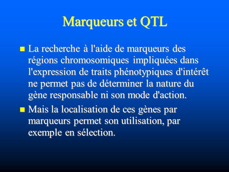 Marqueurs et QTL