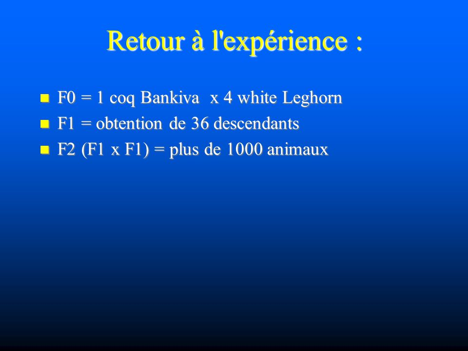 Retour à l expérience : F0 = 1 coq Bankiva x 4 white Leghorn