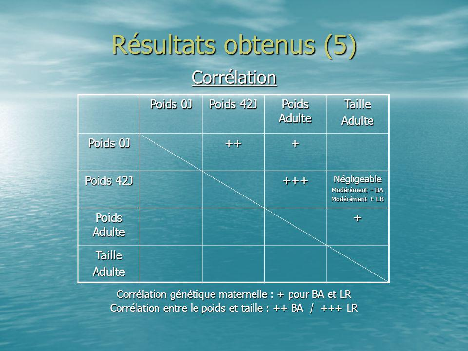 Résultats obtenus (5) Corrélation Poids 0J Poids 42J Poids Adulte