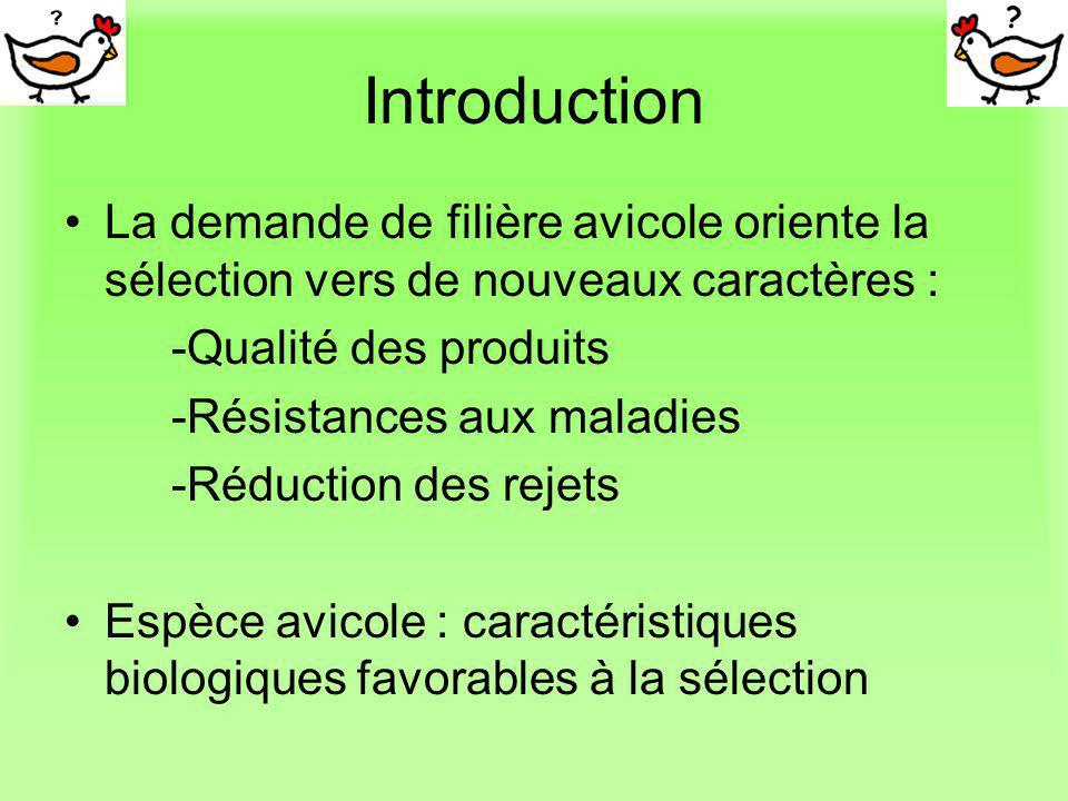 Introduction La demande de filière avicole oriente la sélection vers de nouveaux caractères : -Qualité des produits.