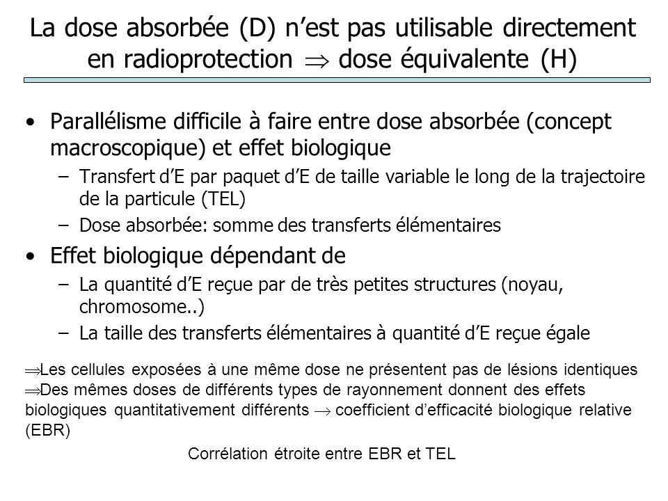 La dose absorbée (D) n'est pas utilisable directement en radioprotection  dose équivalente (H)