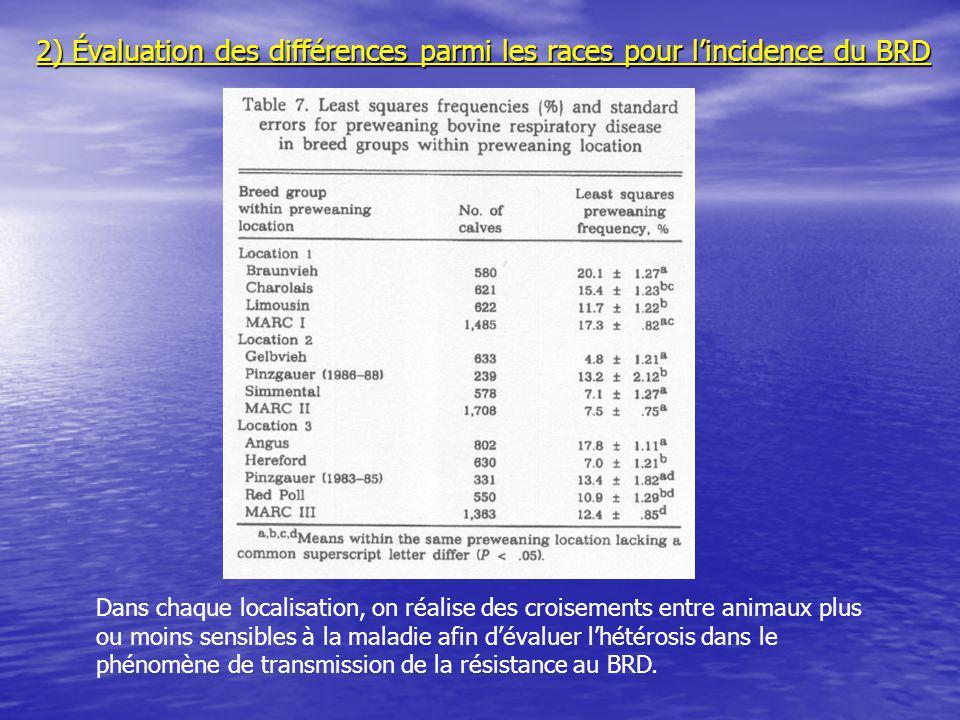 2) Évaluation des différences parmi les races pour l'incidence du BRD