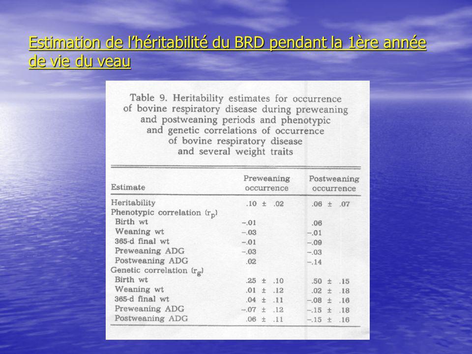 Estimation de l'héritabilité du BRD pendant la 1ère année de vie du veau