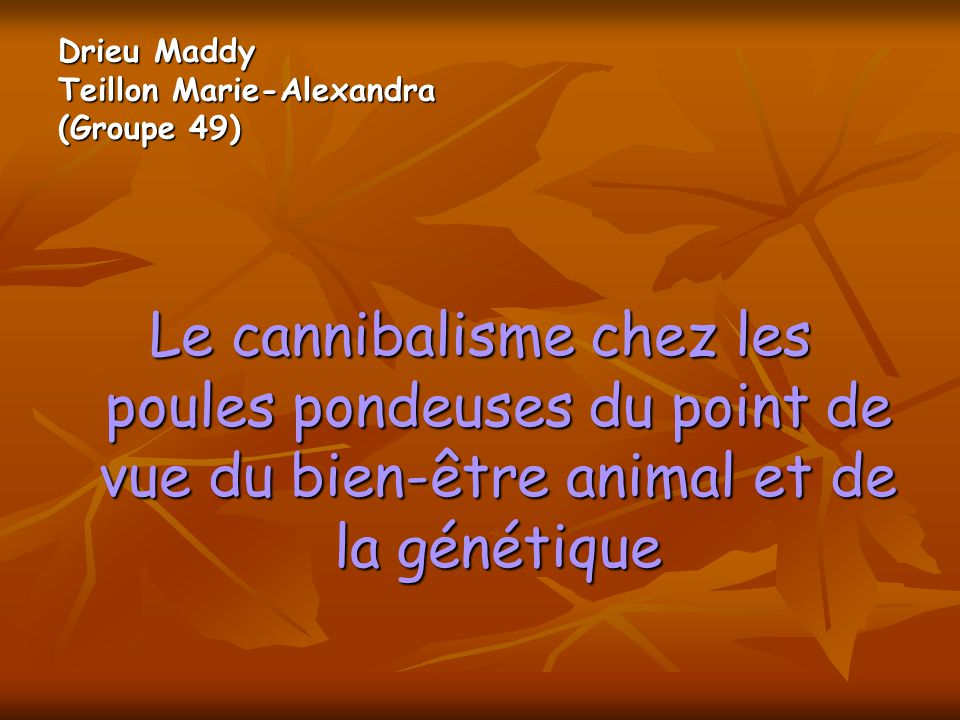 Drieu Maddy Teillon Marie-Alexandra (Groupe 49)