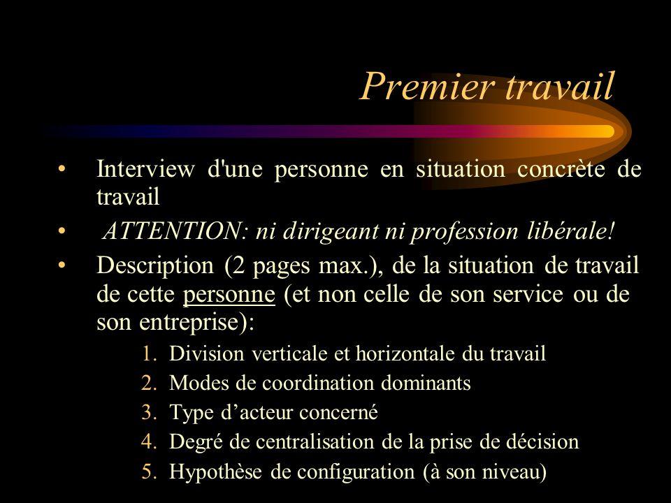 Premier travail Interview d une personne en situation concrète de travail. ATTENTION: ni dirigeant ni profession libérale!
