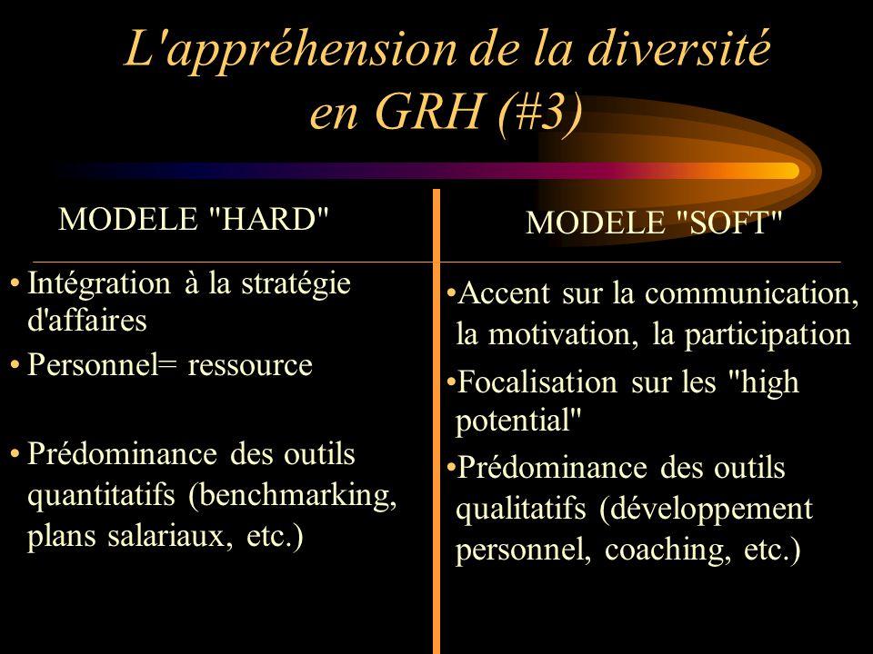 L appréhension de la diversité en GRH (#3)