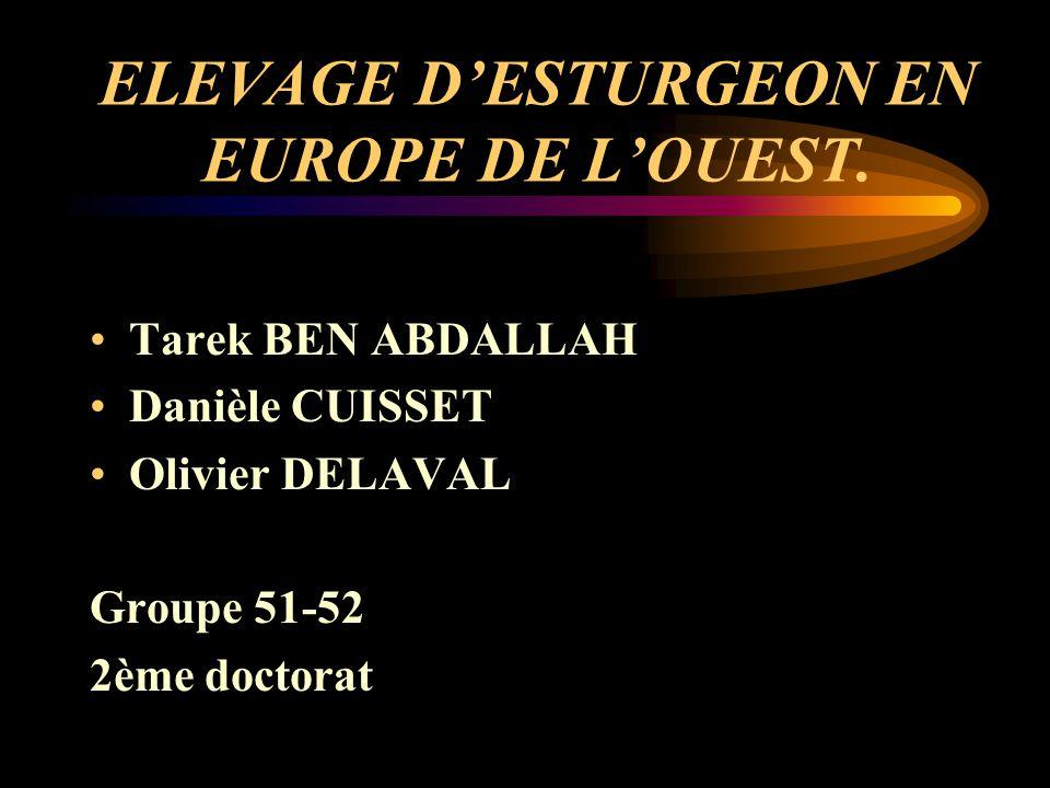 ELEVAGE D'ESTURGEON EN EUROPE DE L'OUEST.