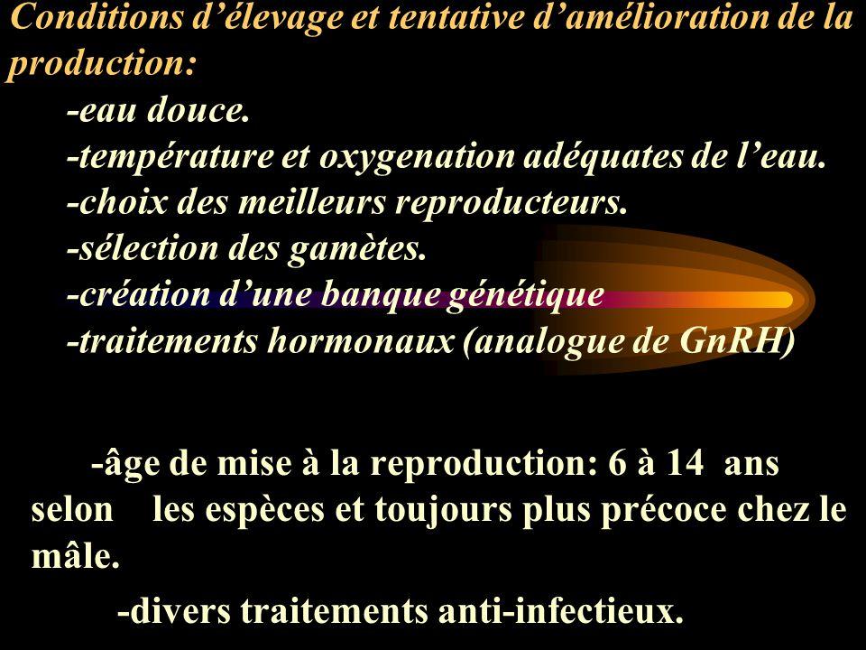 -divers traitements anti-infectieux.