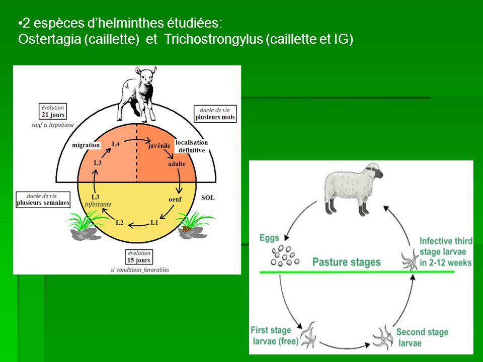 2 espèces d'helminthes étudiées: