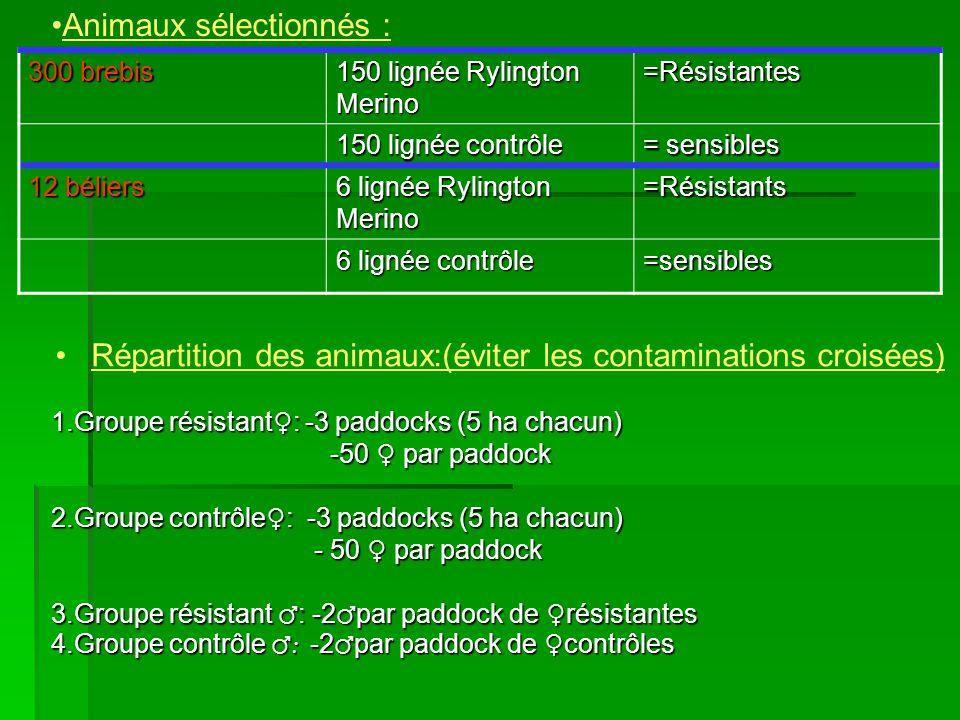 Répartition des animaux:(éviter les contaminations croisées)