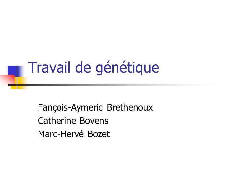 Fançois-Aymeric Brethenoux Catherine Bovens Marc-Hervé Bozet
