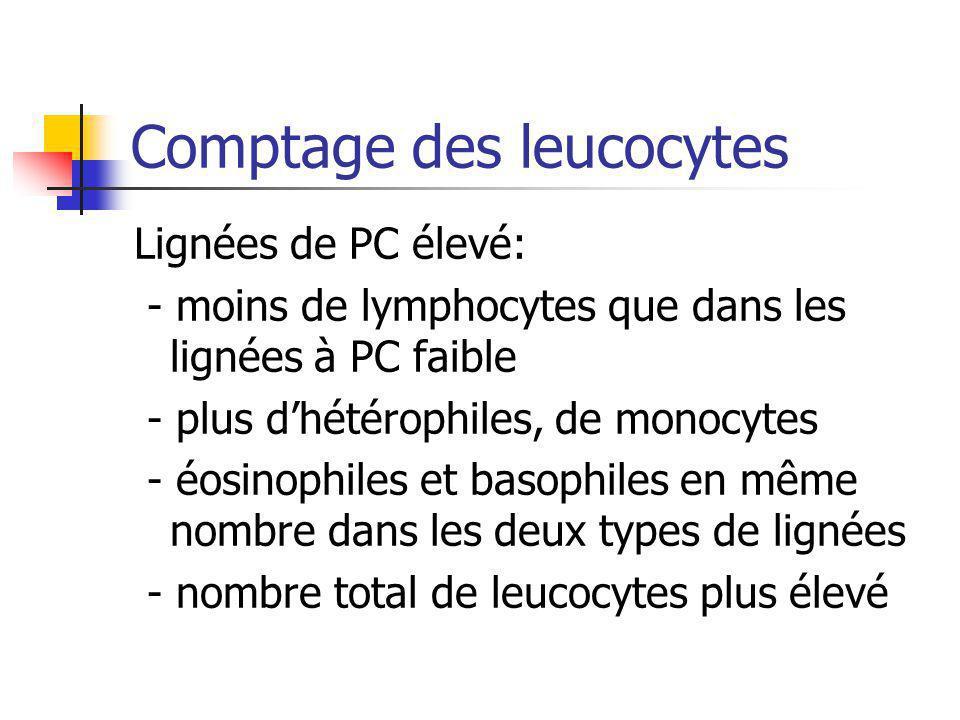 Comptage des leucocytes
