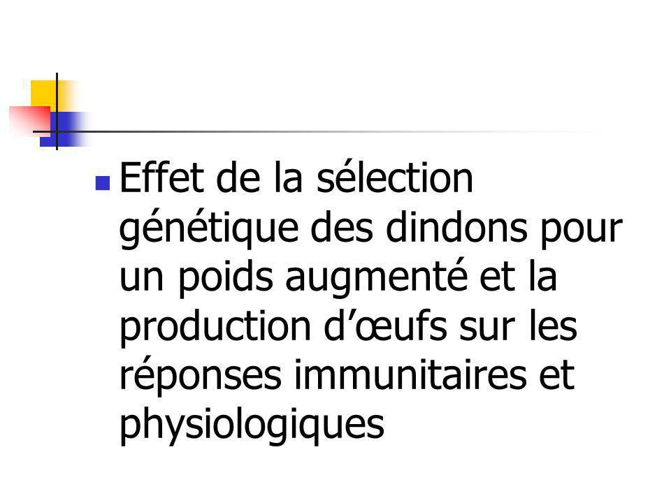 Effet de la sélection génétique des dindons pour un poids augmenté et la production d'œufs sur les réponses immunitaires et physiologiques