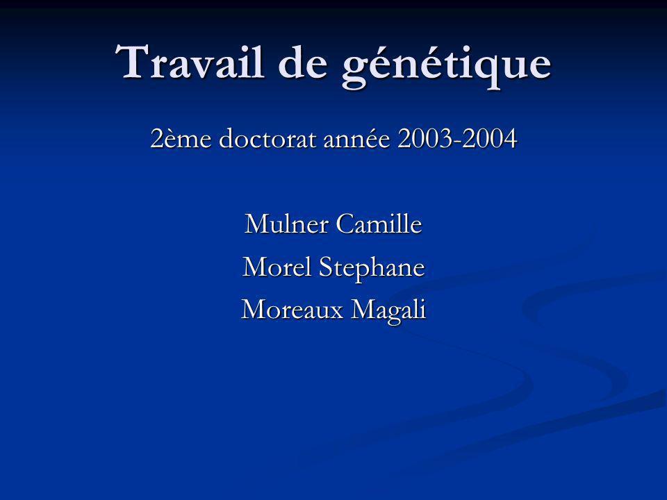 Travail de génétique 2ème doctorat année 2003-2004 Mulner Camille