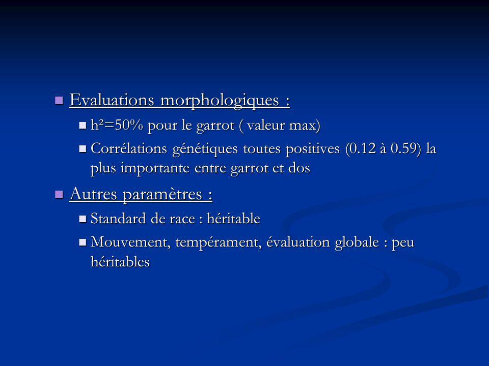 Evaluations morphologiques :