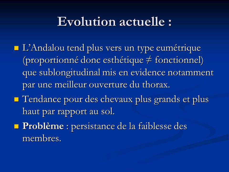 Evolution actuelle :