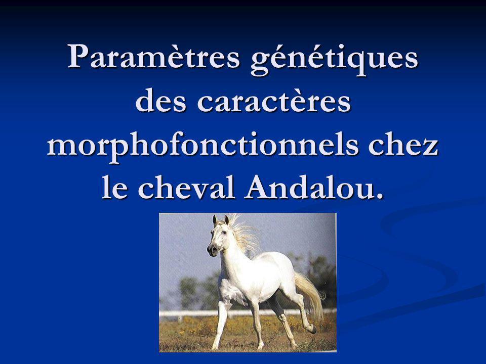 Paramètres génétiques des caractères morphofonctionnels chez le cheval Andalou.