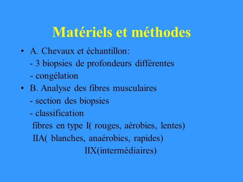 Matériels et méthodes A. Chevaux et échantillon: