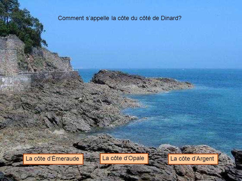 Comment s'appelle la côte du côté de Dinard