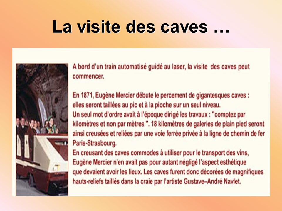 La visite des caves …