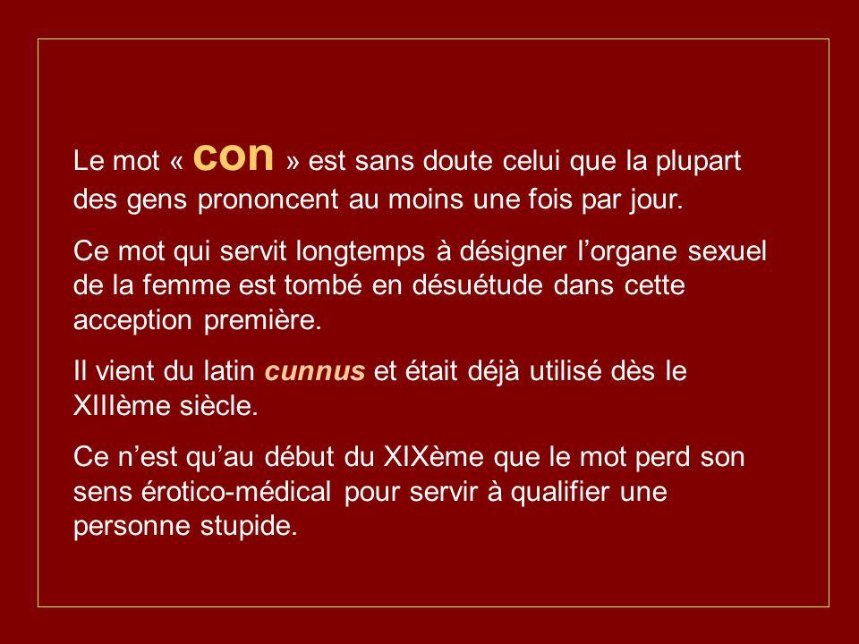 Le mot « con » est sans doute celui que la plupart des gens prononcent au moins une fois par jour.