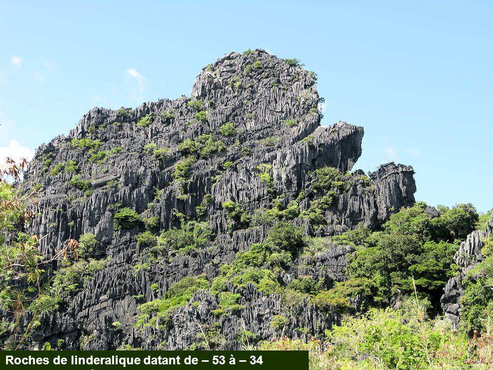 Roches de linderalique datant de – 53 à – 34 millions d'années.